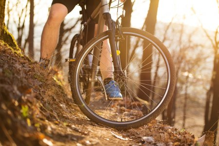 Photo for Closeup of cyclist man legs riding mountain bike on outdoor trail in autumn forest - Royalty Free Image