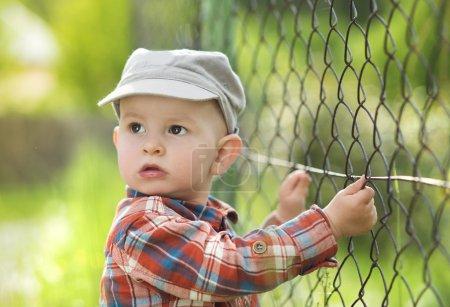 Photo pour Mignon petit garçon regardant à travers la clôture - image libre de droit
