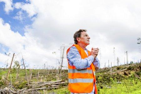 Photo pour Salarié de sauvetage de la forêt détruite sous l'effet de la forte tempête dans les hautes tatras, Slovaquie - image libre de droit