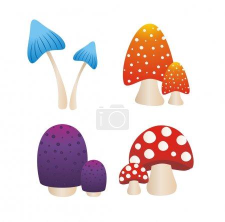 Colourfull mushroom