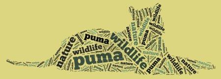 Puma wordcloud