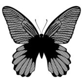 Black lace butterfly on a white background vector