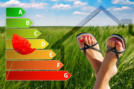 icon of house energy efficiency rating with nice feet, poppy and green background