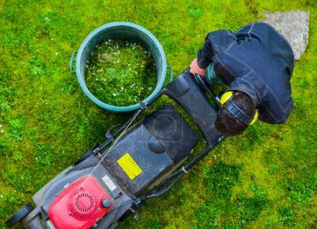 Photo pour Jardinier tondre la pelouse dans un parc - image libre de droit