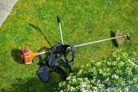 Photo pour Tondeuse à cordes dans un parc - image libre de droit