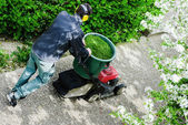 Gardener mowing the lawn in a park