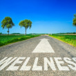 Metaphor illustrating on the road the wellness and...