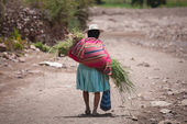 A peasant woman in traditional dress in the mountains of Bolivia