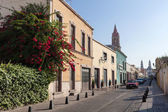 Street of the ancient city Aguascalientes, Mexico