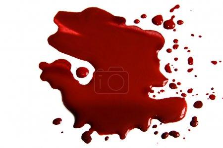 Foto de Manchas de sangre (charco) aisladas sobre fondo blanco. - Imagen libre de derechos