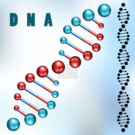 Illustration for Dna strand in 3d and silhouette on blue background - Royalty Free Image