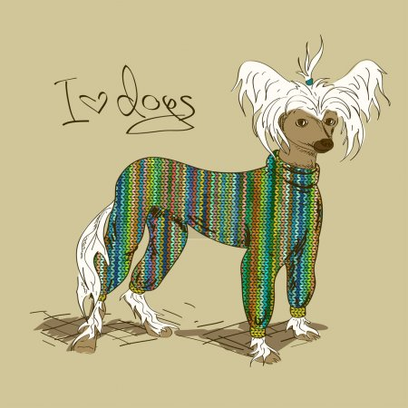 Illustration with Chinese Crested dog