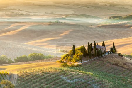 Sunrise in tuscan countryside, Tuscany, Italy