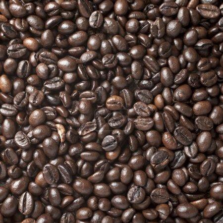 Photo pour Un grand nombre de grains de café torréfiés qui ont été dispersés partout dans la surface utilisée comme arrière-plan - carré - image libre de droit