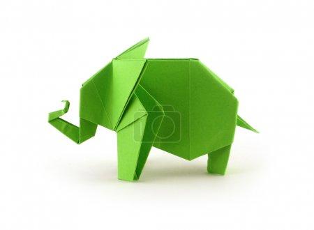 Foto de Elefante origami verde sobre fondo blanco - Imagen libre de derechos
