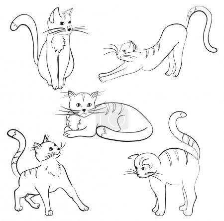 a set of five cartoon cats in different poses, vector