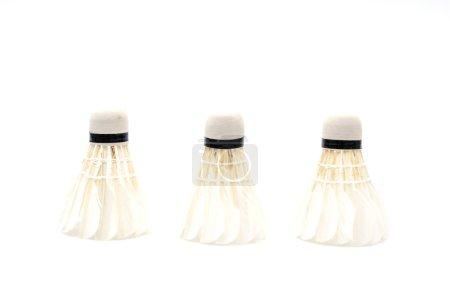 Shuttlecocks on white