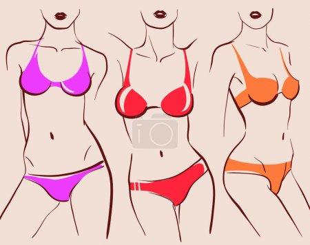 corps de la belle femme en bikini