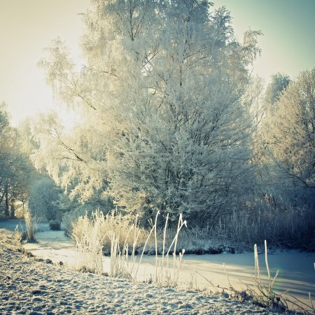 Photo for Beautiful landscape with ice and snow - Royalty Free Image