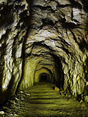 Old mining tunnel.