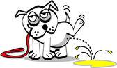 White dog on a leash lifting his leg spraying