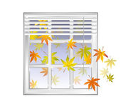 Window frame in fall season with autumn leaves