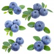 Collection of  fresh Blueberries isolated on white...