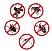 No parasites