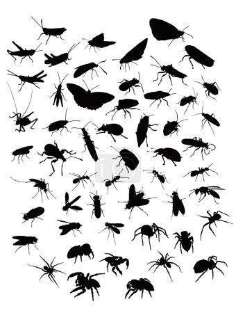 Illustration pour Collection de sillhouettes d'insectes et d'araignées - image libre de droit