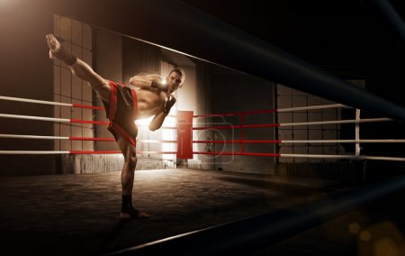 Photo for Young  man kickboxing in the Arena - Royalty Free Image