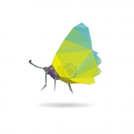 Butterfly abstract isolated on a white backgrounds