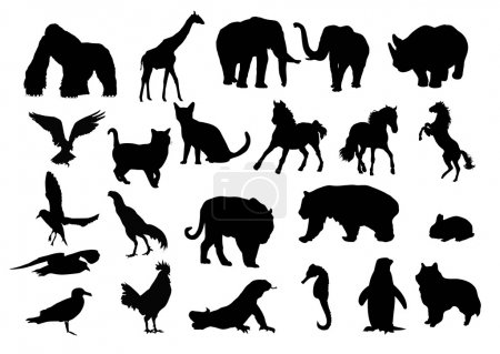 Silhouette of kind animals