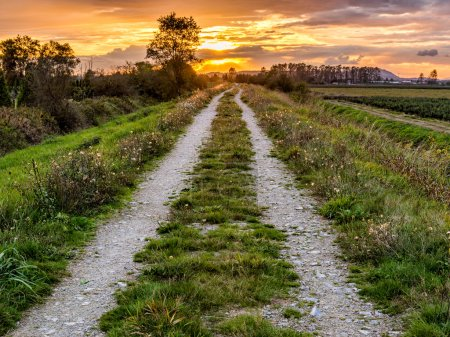 Dirt Road Path Leading to Sunset
