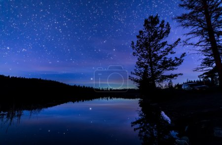 Photo for Reflection of stars and trees in lake at night - Royalty Free Image