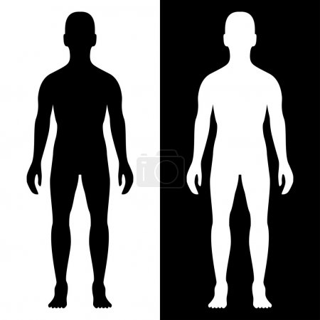 Illustration for Man body silhouette eps8 - Royalty Free Image