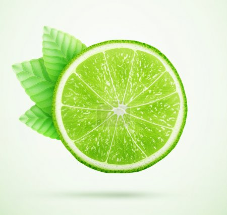 Illustration for Fresh lime with leaves eps10 vector illustration - Royalty Free Image