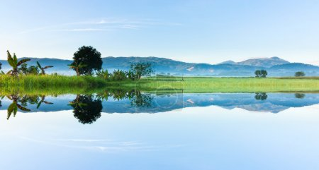 Reflection of nature at Sabah, Borneo, Malaysia