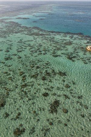 Reef aerial view