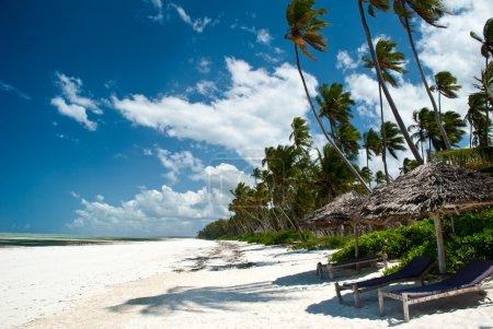 Trobical beach in Zanzibar