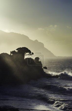 view of ligurian coastline, Italy