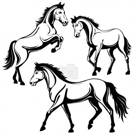 Illustration pour Ensemble de trois chevaux. Image en blanc noir, isolée sur fond blanc, illustration vectorielle . - image libre de droit