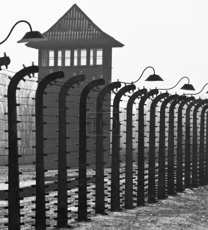 Auschwitz II-Birkenau, the extermination camp, whe...