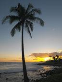 Kauai - Hawaiian Islands