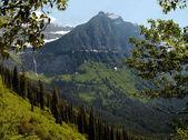 Glacier national park - montana - États-Unis d'Amérique