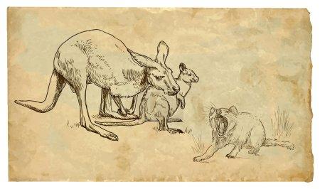 Kangaroos and Tasmanian devil