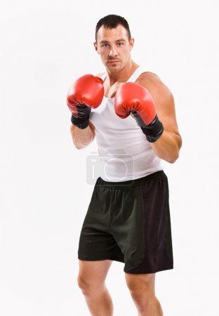 Photo pour Boxer dans les gants de boxe formation - image libre de droit