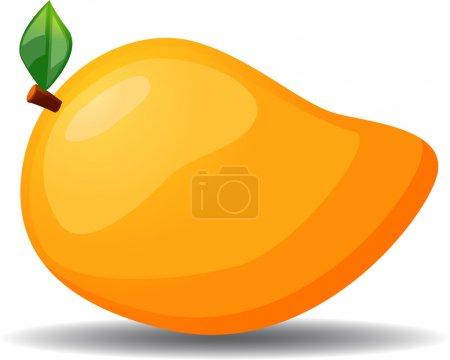 Mango vector illustration icon