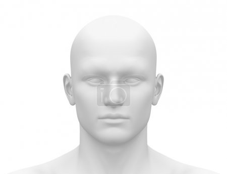 Photo for Blank White Male Head - Front view - Royalty Free Image