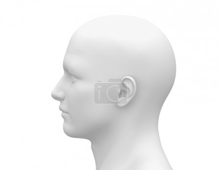 Photo for Blank White Male Head - Side view - Royalty Free Image