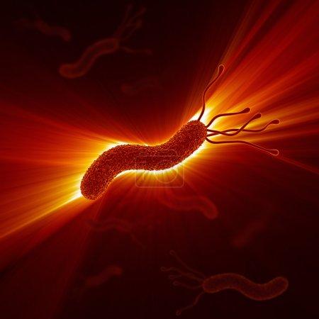 Helicobacter Pylori...